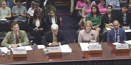 Mark Bromley Testifies at Foreign Affairs Committee Hearing on Global Human Rights